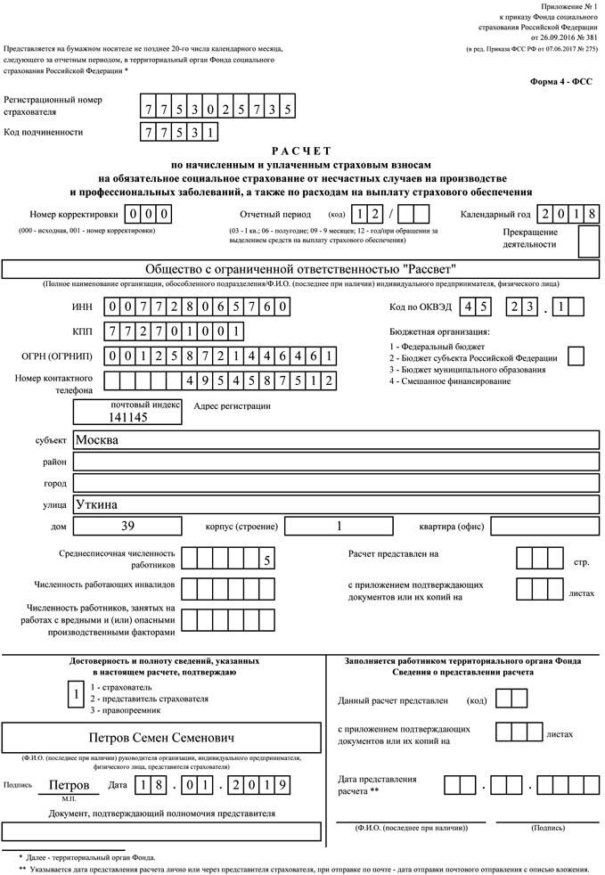 Образец формы 4-ФСС за 2018 год-2